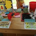 "Stand ""Save the insects"" beim Schulfest im Juni"